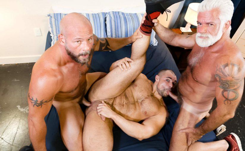 Muscle Daddy Bears